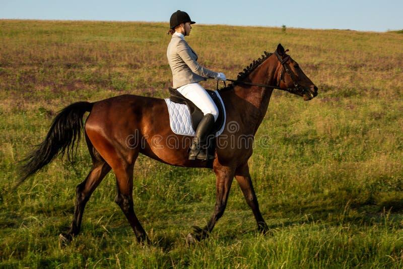 Cavaleiro da jovem mulher com seu cavalo na luz do por do sol da noite Fotografia exterior no humor do estilo de vida fotos de stock royalty free