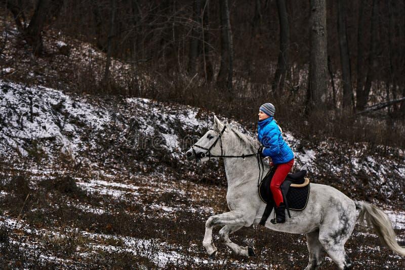 Cavaleiro da jovem mulher em um blazer azul e em ostentar um tampão para uma caminhada em um cavalo branco foto de stock
