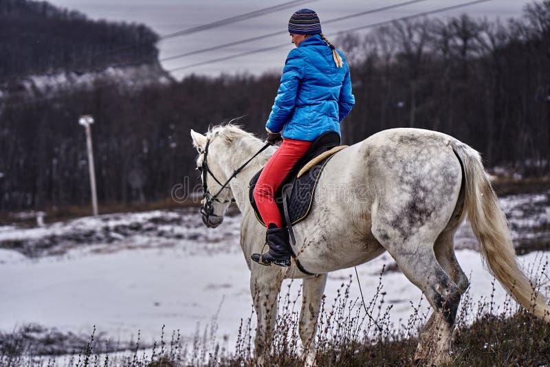 Cavaleiro da jovem mulher em um blazer azul e em ostentar um tampão para uma caminhada em um cavalo branco foto de stock royalty free
