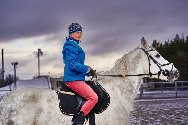 Cavaleiro da jovem mulher em um blazer azul e em ostentar um tampão para uma caminhada em um cavalo branco fotos de stock