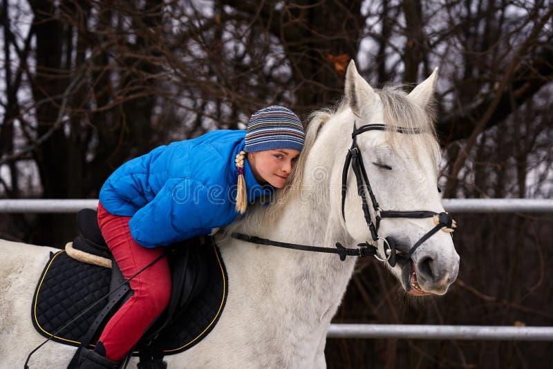 Cavaleiro da jovem mulher em um blazer azul e em ostentar um tampão para uma caminhada em um cavalo branco imagem de stock