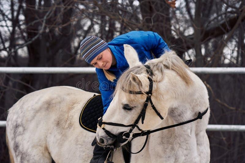 Cavaleiro da jovem mulher em um blazer azul e em ostentar um tampão para uma caminhada em um cavalo branco em um dia de inverno n foto de stock royalty free