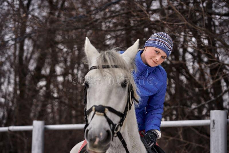 Cavaleiro da jovem mulher em um blazer azul e em ostentar um tamp?o para uma caminhada em um cavalo branco imagens de stock