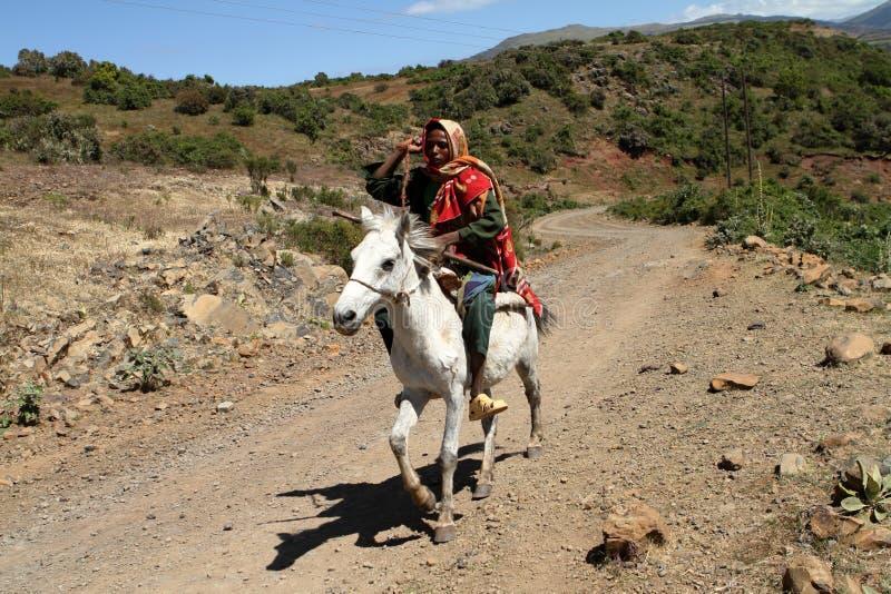 Cavaleiro de Etiópia fotos de stock royalty free