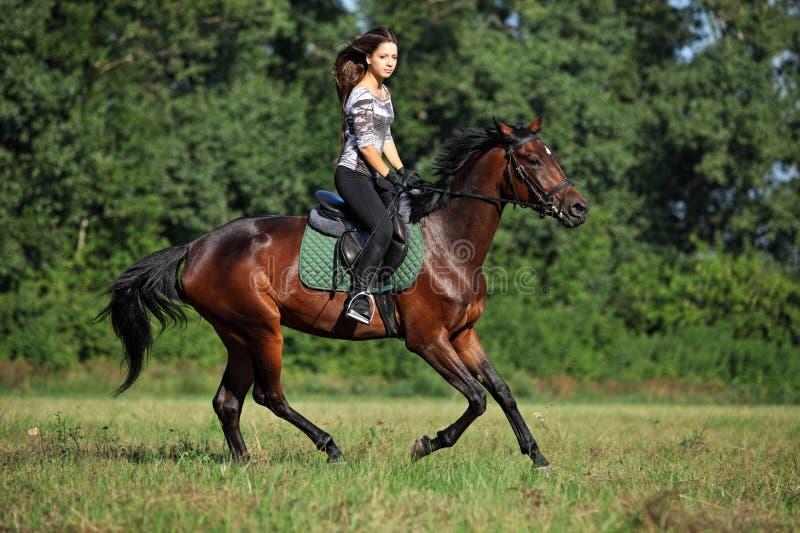 Cavaleiro do cavalo em uma fuga fotografia de stock royalty free