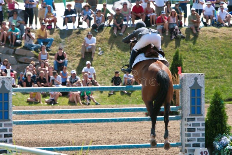 Cavaleiro do cavalo na competição de salto de Bromont imagens de stock