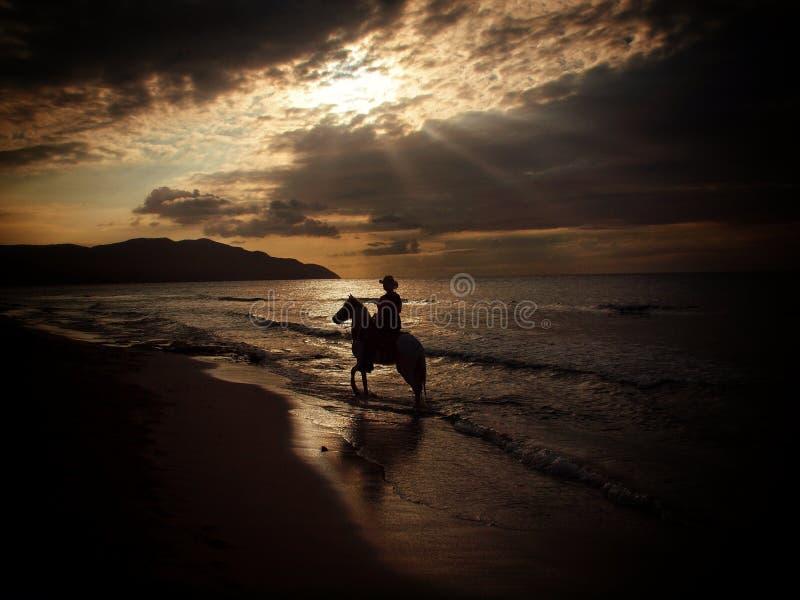 Cavaleiro do cavalo na praia no por do sol fotografia de stock