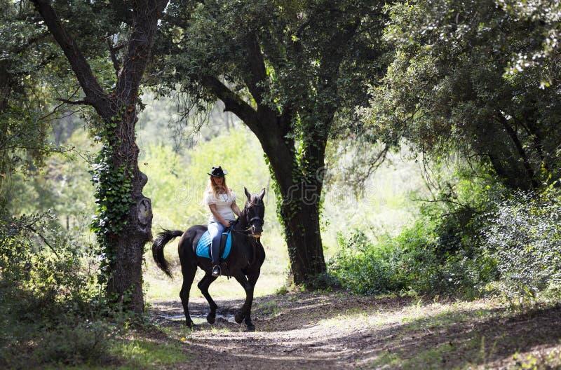 Cavaleiro e cavalo da mulher imagem de stock
