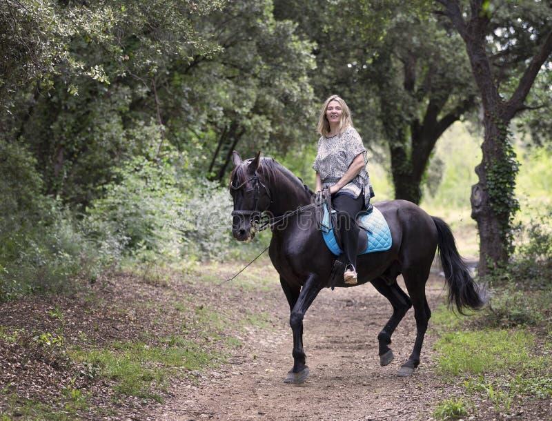 Cavaleiro e cavalo da mulher imagens de stock royalty free