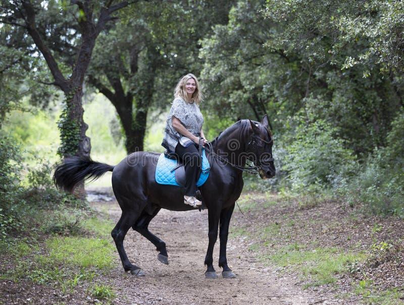 Cavaleiro e cavalo da mulher foto de stock