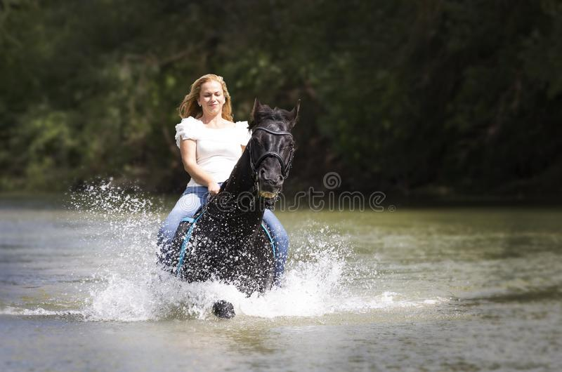 Cavaleiro e cavalo da mulher fotos de stock royalty free