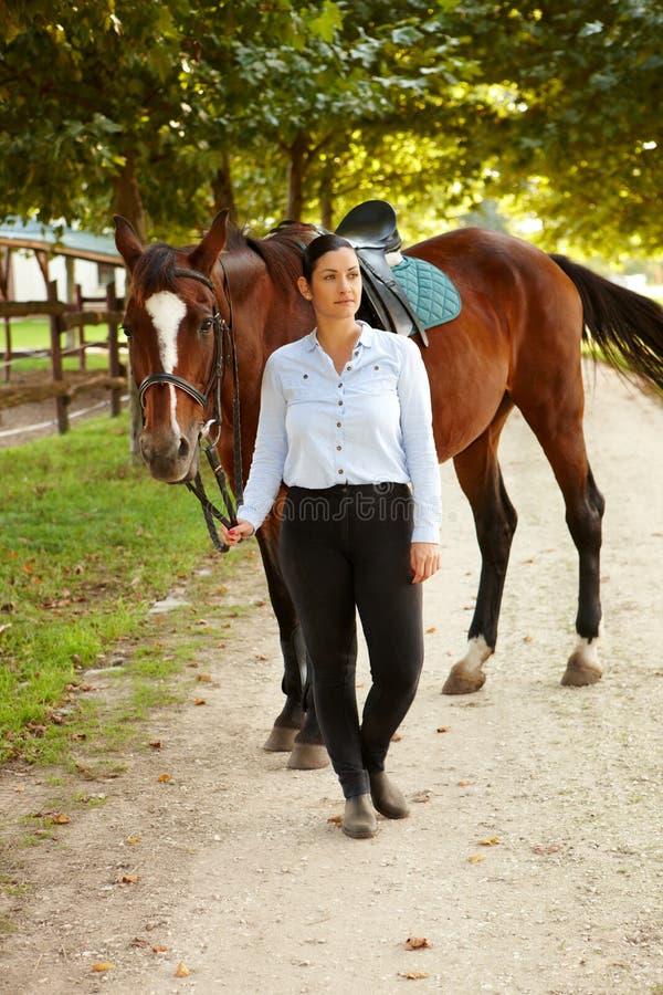 Cavaleiro e cavalo fora imagens de stock royalty free