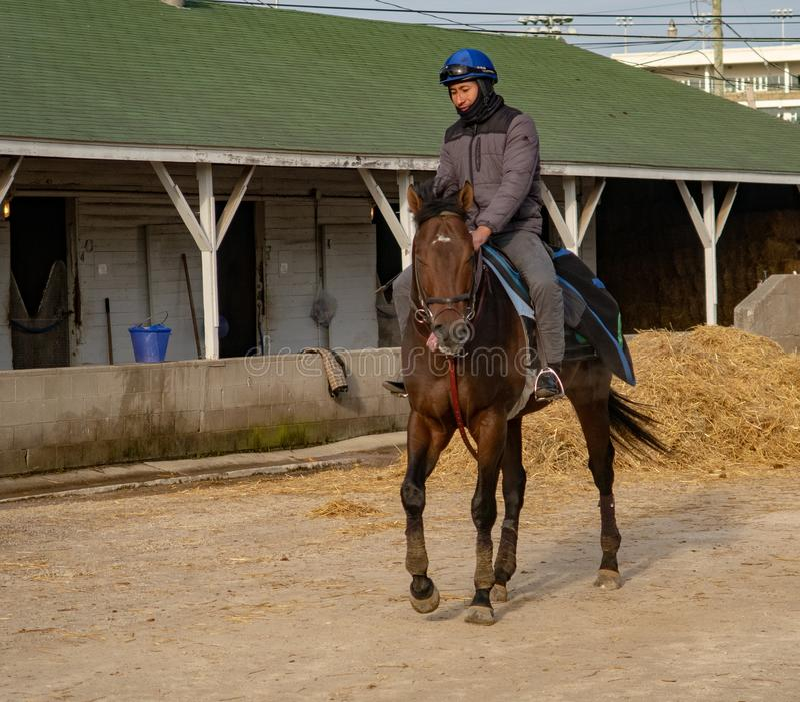 Cavaleiro em um cavalo de raça em Churchill Downs fotografia de stock royalty free