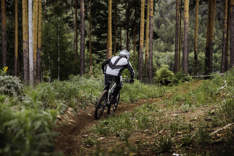 Cavaleiro em uma bicicleta que vem para baixo montanha foto de stock royalty free