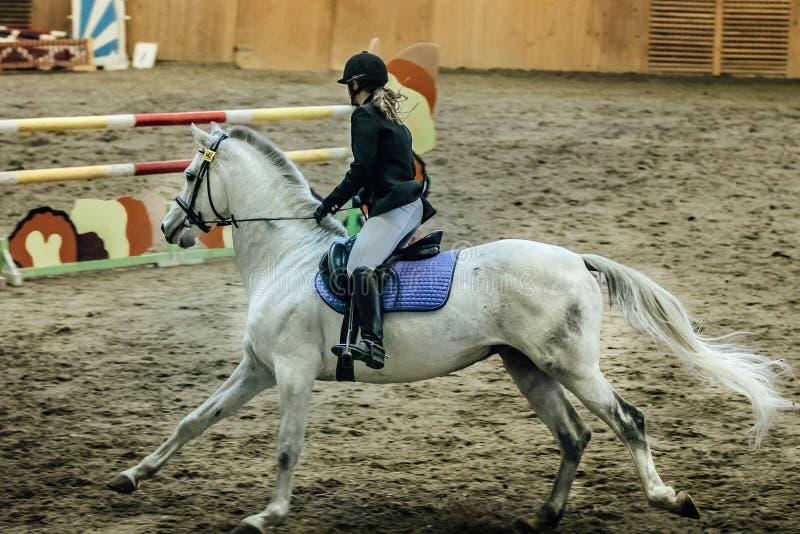 Cavaleiro fêmea novo no cavalo branco fotografia de stock royalty free