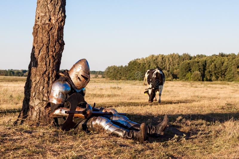 Cavaleiro medieval foto de stock royalty free