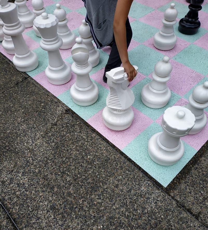 Cavaleiro movente da mão na placa de xadrez da rua fotografia de stock royalty free