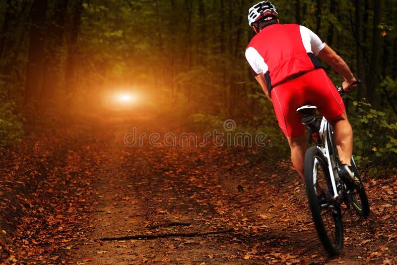 Cavaleiro na ação na sessão do Mountain bike do estilo livre foto de stock royalty free
