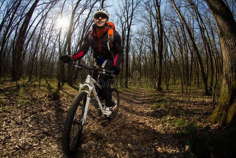 Cavaleiro na ação na sessão do Mountain bike do estilo livre fotografia de stock