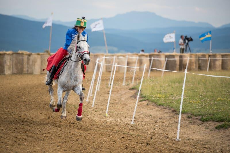 Cavaleiro novo em um cavalo branco durante uma mostra da parada foto de stock