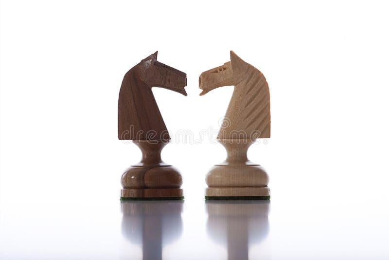 Cavaleiros da xadrez imagens de stock royalty free