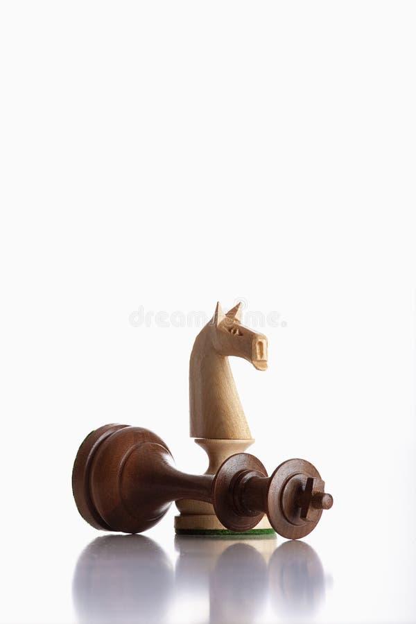 Cavaleiros da xadrez fotos de stock