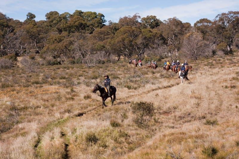 Cavaleiros do cavalo do ecoturismo na fuga fotos de stock royalty free