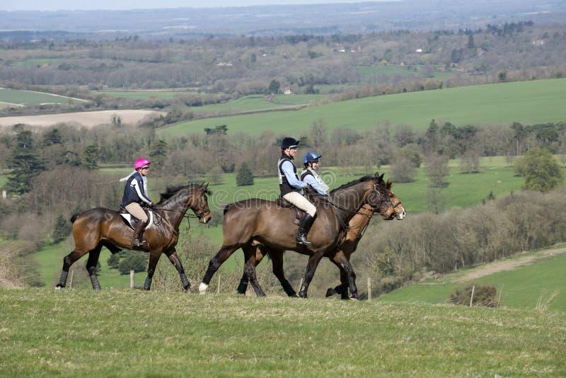 Cavaleiros do cavalo no campo inglês Reino Unido imagem de stock