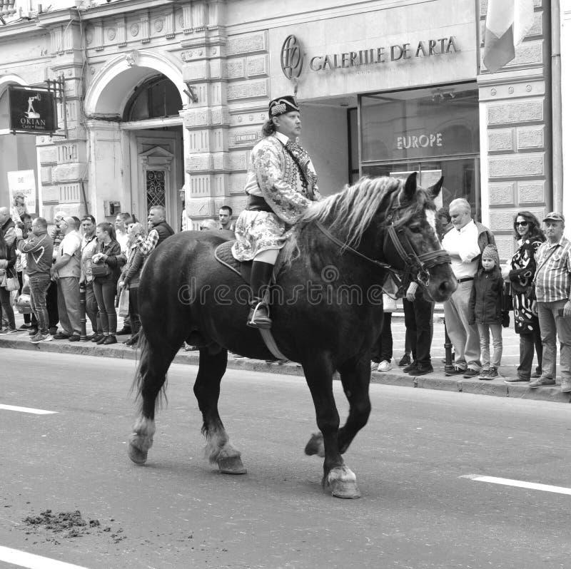 Cavaleiros e cavalos durante Juni Parade, em Brasov, a Transilvânia fotografia de stock