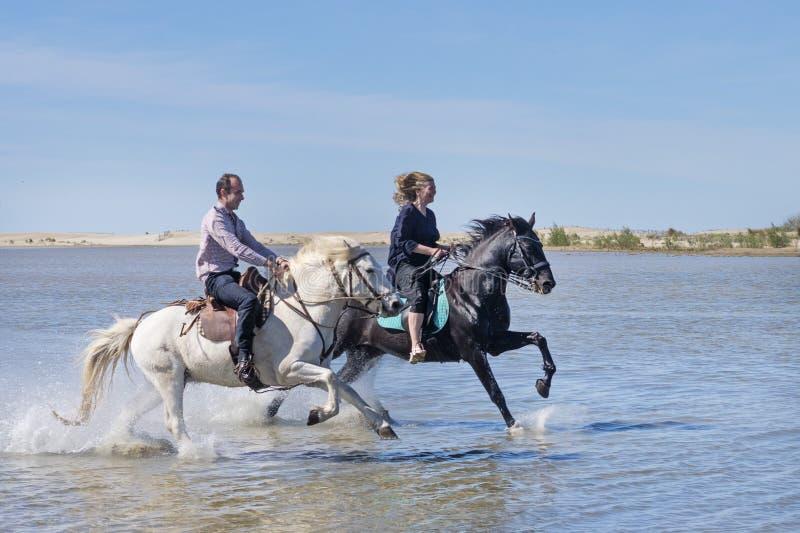 Cavaleiros na praia foto de stock royalty free