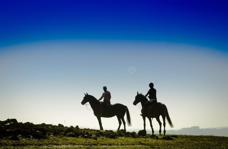 Cavaleiros no campo imagem de stock royalty free