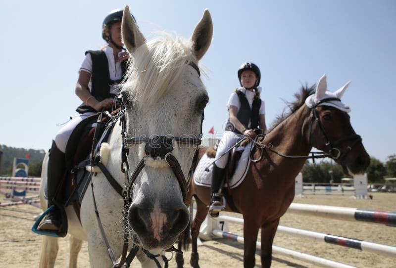 Cavaleiros novos na competição local do cavalo em mallorca foto de stock royalty free