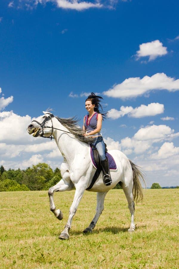 Cavalier à cheval photo libre de droits