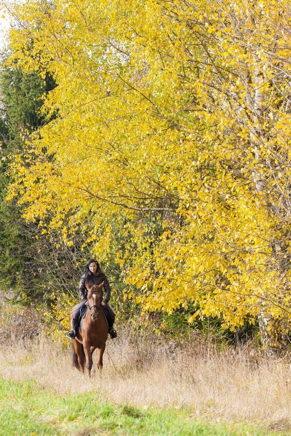Cavalier à cheval photographie stock