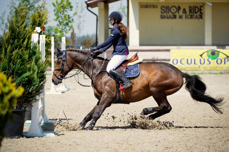 Cavalier équestre de cheval s'arrêtant devant les barres Décrivez montrer un concurrent exécutant en concurrence de sauter d'expo image stock