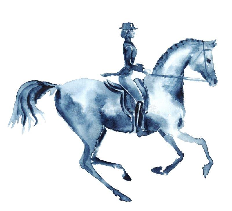 Cavalier d'aquarelle et cheval galopant de dressage sur le blanc illustration de vecteur