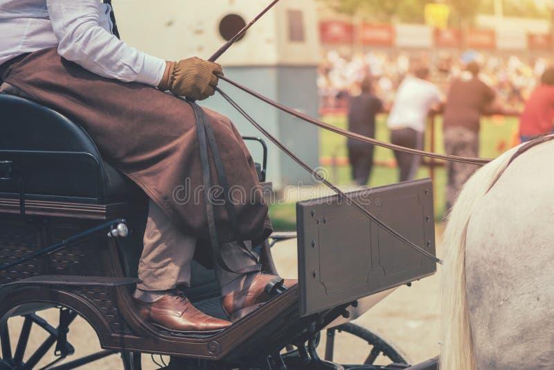 Cavalier de chariot hippomobile images stock