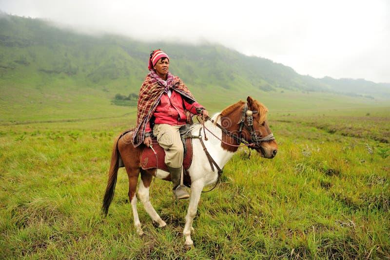 Cavalier de cheval au bâti Bromo photos libres de droits
