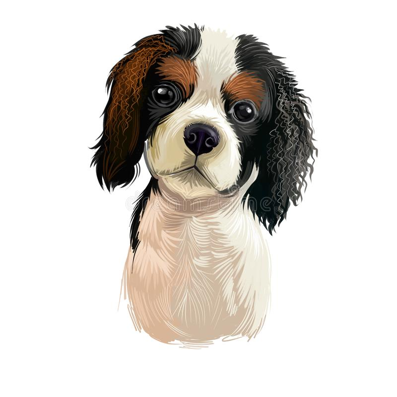 Cavalier King Charles Spaniel dog breed isolated on white background digital art illustration. Cute pet hand drawn portrait. Graphic clipart design realistic vector illustration