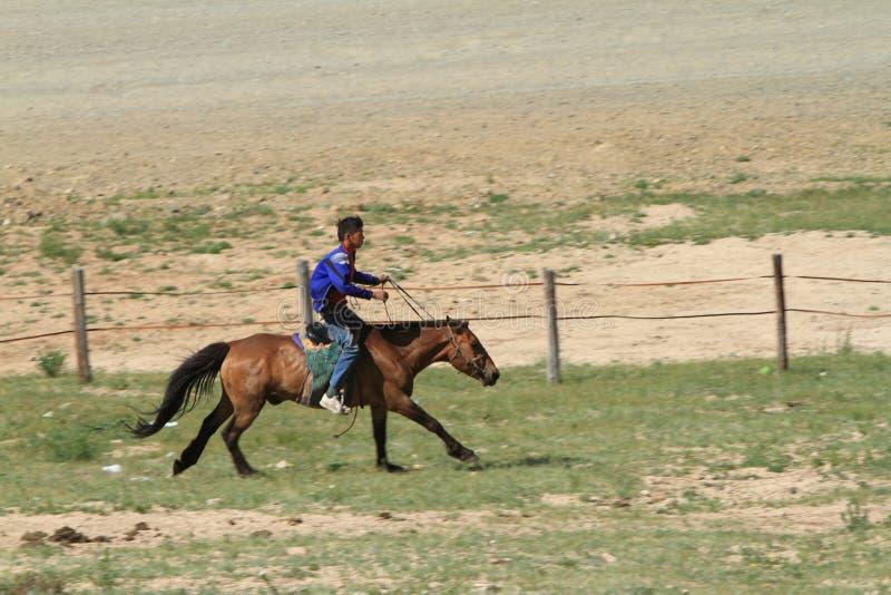 Cavalier mongol photos stock