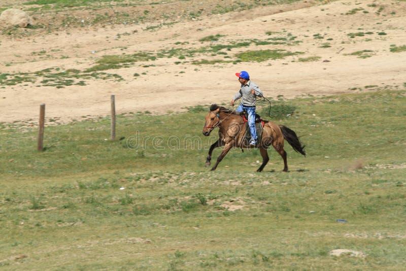 Cavalier mongol photo libre de droits