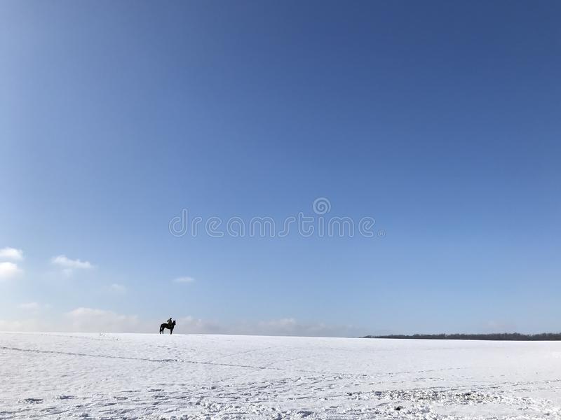 Cavalier solitaire sur un cheval noir image libre de droits
