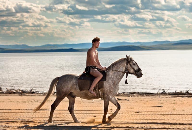 Cavalier sur la plage image stock