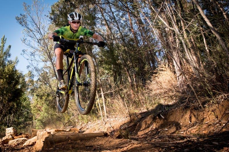 Cavaliere adolescente del mountain bike che ottiene aria in una foresta immagini stock