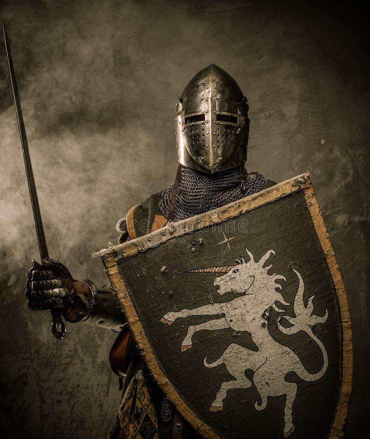 Cavaliere in armatura piena fotografia stock