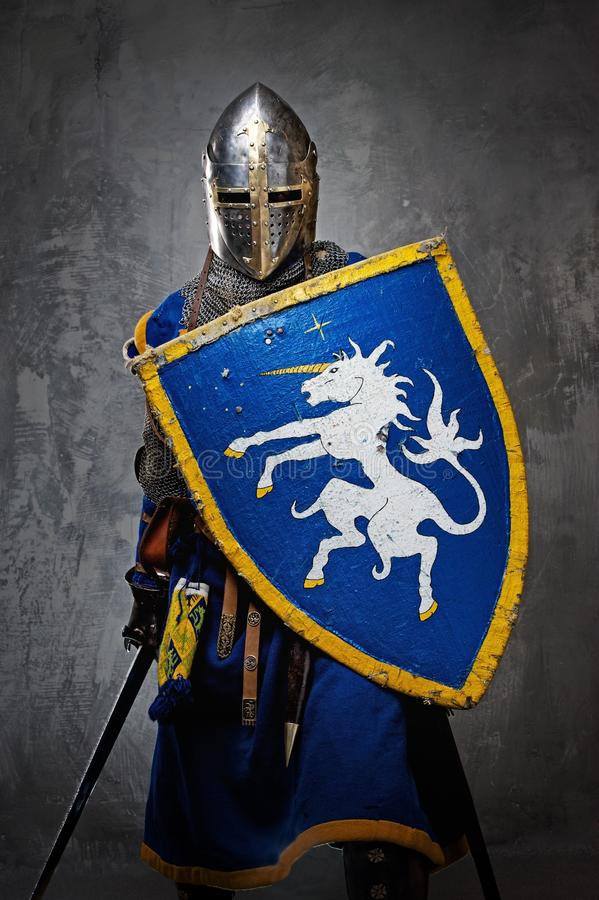 Cavaliere con una spada e uno schermo fotografia stock