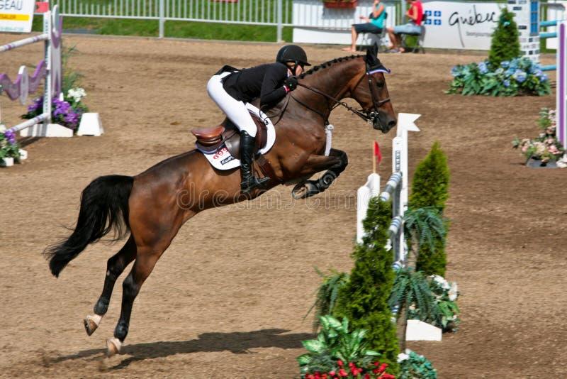Cavaliere del cavallo alla concorrenza di salto di Bromont fotografia stock