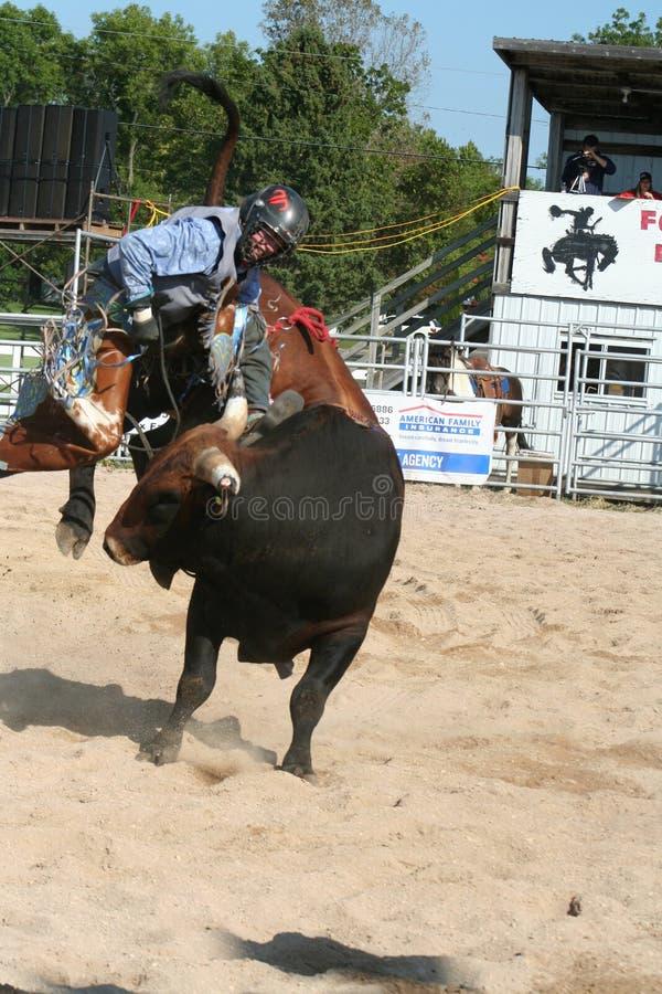Cavaliere 3 del toro fotografia stock