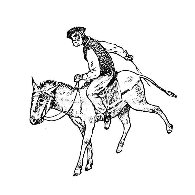 Cavaliere dell'uomo in vestiti nazionali Greco sul cavallo o sull'asino Simbolo della Grecia antica Schizzo d'annata inciso diseg illustrazione di stock
