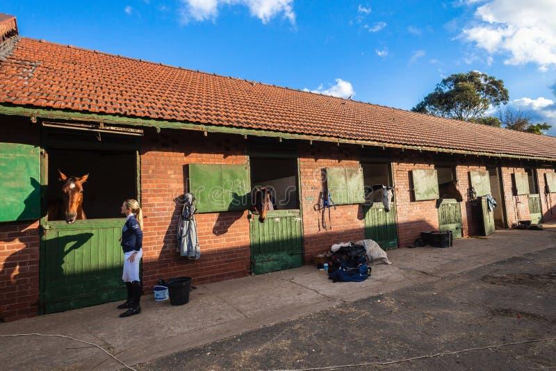 Cavaliere della donna delle stalle dei cavalli fotografia stock libera da diritti